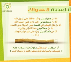 12140_222332974026_559864026_4307817_3905445_n (ahlilsunna) Tags: hello hai ka  allah    salaf