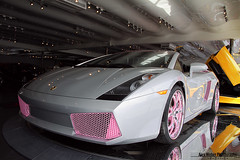 The Pink Lamborghini 1 (Alex Weber) Tags: world pink light baby alex car silver one 1 with shot off spyder showroom lp limited lamborghini rare find supercar accents weber gallardo dealer combo lambo 560 lp560