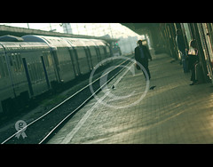 Nobody can go back and start a new beginning, but anyone can start today and make a new ending. (** Nico **) Tags: life street light boy orange sun man france green bird station train track raw perspective beginning backlit cinematic ending theauthorsplaza nicodepasquale gettyimagesfranceq1