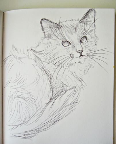Kitty sketch 2