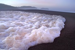 the foam that swallowed the world (pbo31) Tags: ocean california morning sky brown white color detail macro beach nature water sunrise outdoors dawn lowlight nikon waves view purple earth tide marin small depthoffield pacificocean motionblur shore foam bubble bayarea vista marincounty d200 february westcoast marinheadlands seafoam 2010 northbay rodeobeach goldengatenationalparks goldengatenationalrecreationarea doff sepiolite
