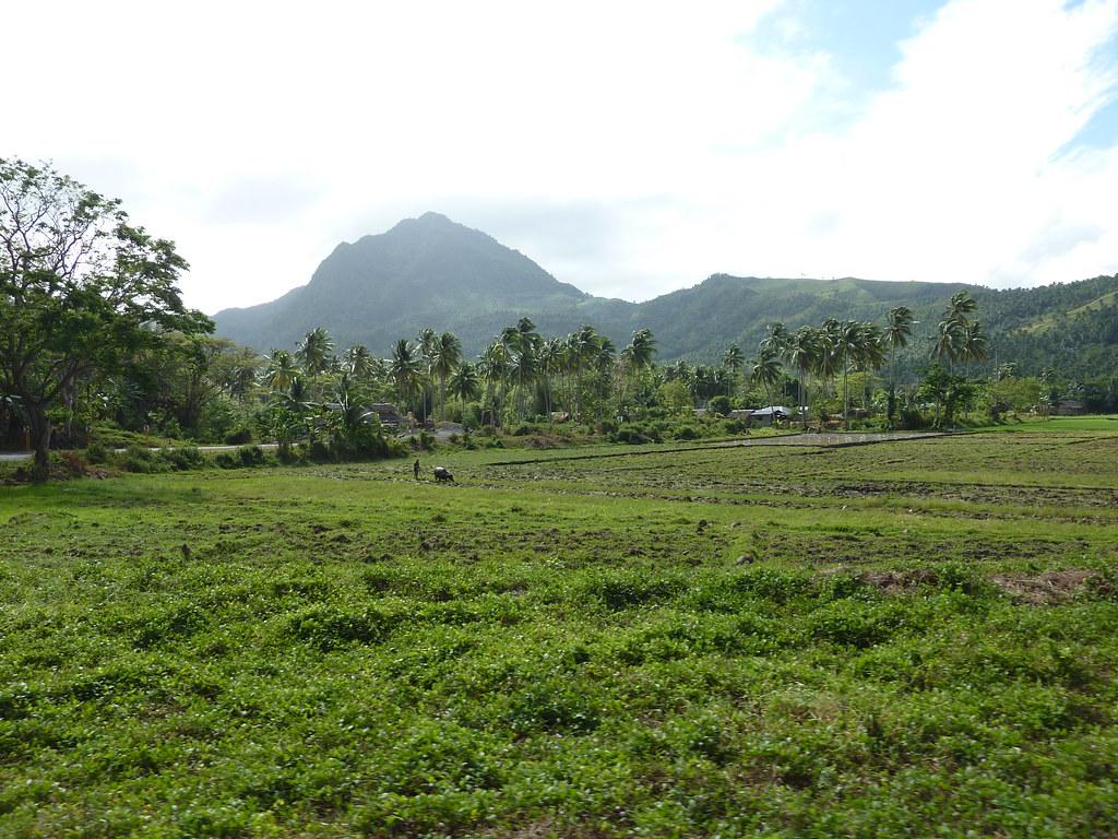 Leyte-Ormoc (36)