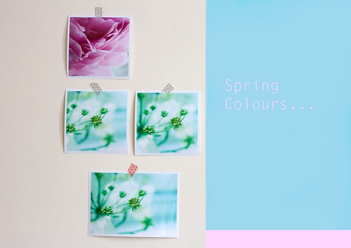 photo wall spring