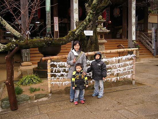 櫻花指標樹