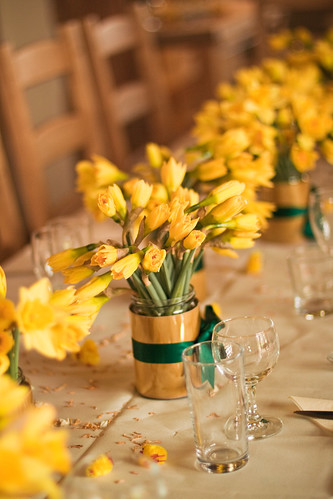 Daffodil centre pieces