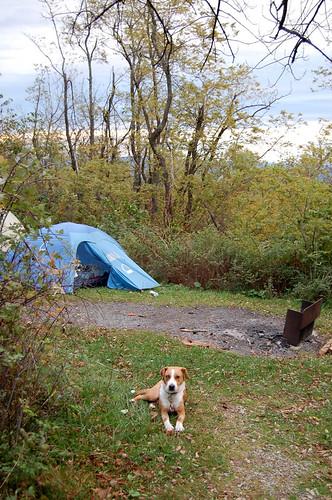 loft mtn campground