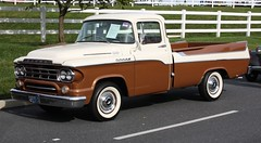 1959 Dodge D100 Sweptside pickup (carphoto) Tags: pickup dodge d100 1959 sweptside hersheyfleamarket2009 1959dodged100sweptsidepickup ©richardspiegelmancarphoto