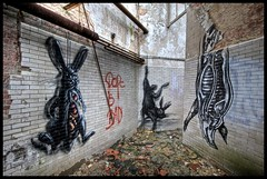 Roa - The Butchers (Romany WG) Tags: street urban rabbit art abandoned animals graffiti pig hare industrial factory belgium aerosol explorers exploration butchers urbex roa