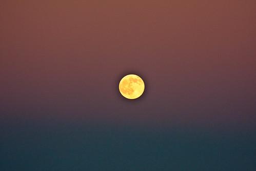 Moon detail