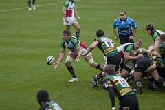 IMG_0281 (David Coldrey) Tags: sport gardens franklin evans northampton rugby nick union saints guinness versus premiership quins harlequins