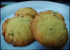 kcook2