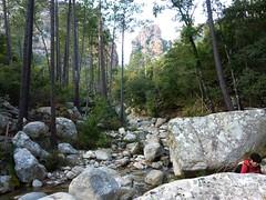 Canyon de Carciara par les ruisseaux de Mela/Carciara : en vue du canyon