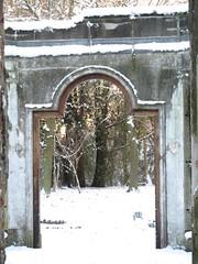 The door to the woods