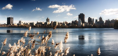 Upper Lake in New York Central Park (Werner Kunz) Tags: world city nyc blue sky urban usa lake ny newyork reflection building tower water grass skyline clouds america photoshop town us nikon downtown peace flat centralpark manhattan wideangle center calm stadt rest 40 dri blauerhimmel hdr hdri werner metropole skyscrapper hectic kunz photomatix 20fav explored colorefex nikond90 topazadjust werkunz1 nyamerica