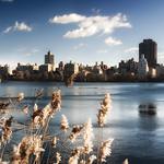 Upper Lake in New York Central Park