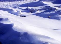 DSCF1715 (dmixo6) Tags: snow canada abstract weather muskoka flakes 2009 drift dugg dmixo6