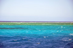 Second Longest Coral Reef in the World