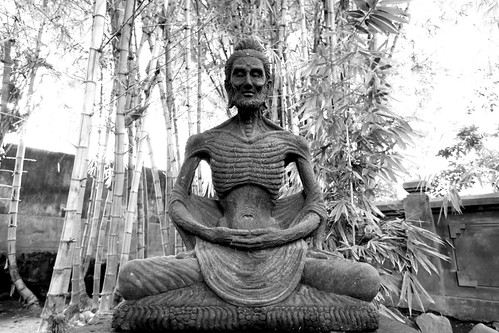 siddhartha theme How do the spiritual elements of siddhartha make it different from any other story of an alienated youth 2  the theme of alienated youth is a timeless theme in.