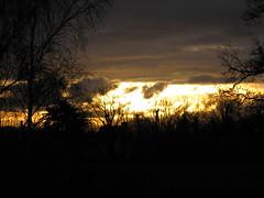 Golden sunrise in Brittany Alba (Bretagna) Soleil levant en Bretagne