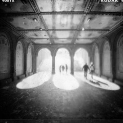 Untitled-1.3 (scott w. h. young) Tags: park nyc newyorkcity light people 120 film fountain mediumformat kodak terrace manhattan trix central diana 400 noon archway bethesda dianaf 38mm