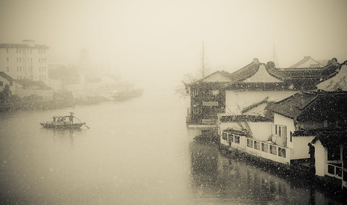 IMG_1528 (by changyang1230)