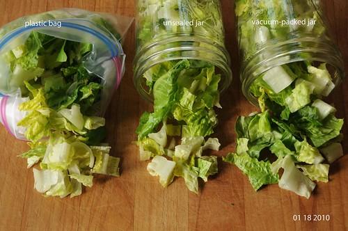 01-18-10 lettuce