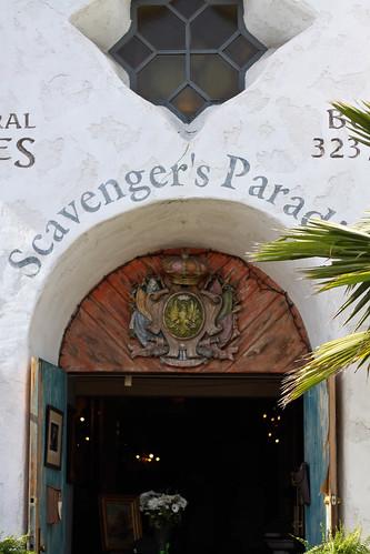 Scavengers Paradise
