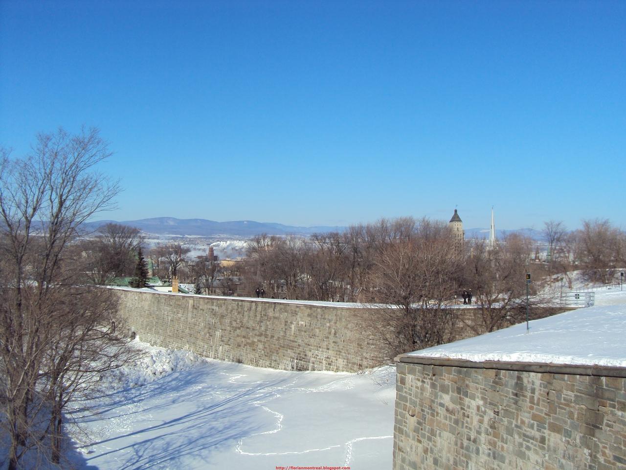 2010-02-13_006