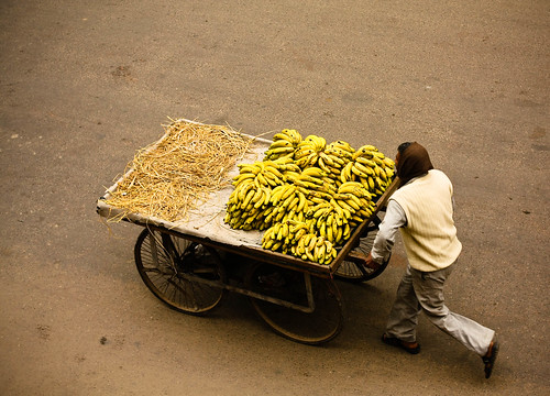 Taking the bananas for a walk