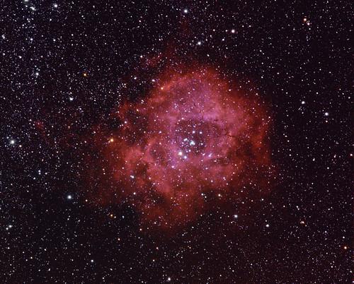 Andrea Tosatto: Rosette Nebula