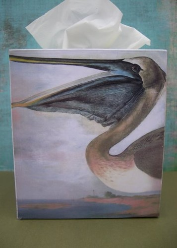 Coastal Bird Tissue Cover - Pelican
