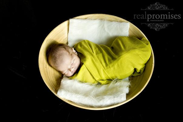 4392446892 213e8b8c7d o Baby Boy | Nashville Hendersonville TN Newborn Photographer