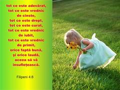 Filipeni 04-08 (Palosi Marton) Tags: kids childrens copii crestine versete biblice