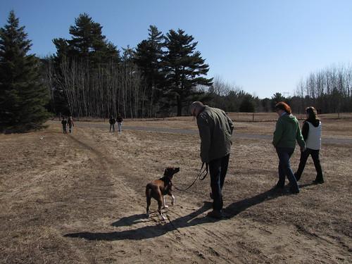 Dog park walk