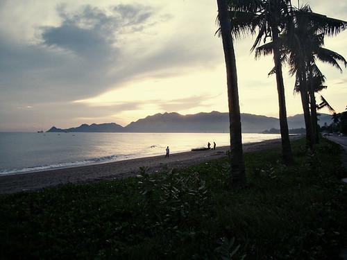 beachamproof3