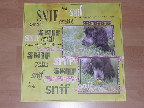 350_snif_01