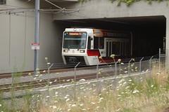 Tri-Met 207 Tunnel
