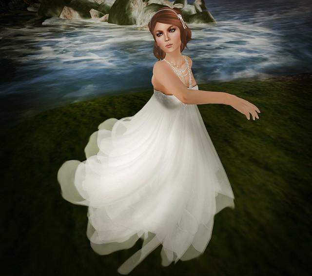 Bride swan
