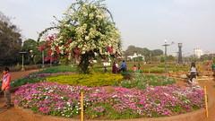 The Hanging Gardens (Rckr88) Tags: india bombay mumbai garden gardens greenery green flower flowers hanginggardens hanginggardensmumbai asia