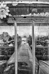 Palm House (Francis Mansell) Tags: palmhouse window glass condensation pane kewgardens kew blackwhite monochrome niksilverefexpro2 royalbotanicgardenskew