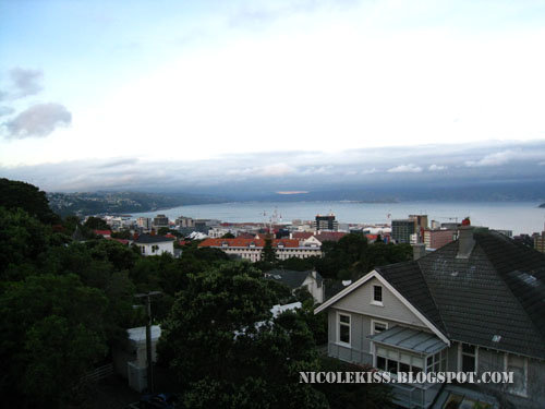 view of wellington 3