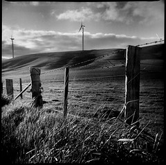 golgotha (mugley) Tags: wood sky blackandwhite bw 120 6x6 film grass clouds contrast rural fence mediumformat landscape three shadows kodak timber farm trix country toycamera australia windmills victoria 400tx scan hills negative barbedwire epson posts windfarm turbines yellowfilter xtol builtin kodaktrix400 v700 vredeborch directionallight acciona waubra lightwindow cityofballarat reporterjuniorii shireofpyrenees