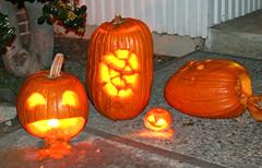 jack o'lanterns (Beckerbuns) Tags: halloween pumpkins jackolanterns