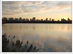 New York 2009 - Central Park