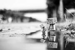 黑白danbo (sⓘndy°) Tags: sanfrancisco toy toys figure figurine sindy kaiyodo yotsuba danbo revoltech danboard