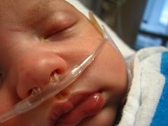 resting (sivyerb) Tags: hospital oxygen ezra rsv