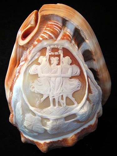 Резные камейные раковины. 16-20 век