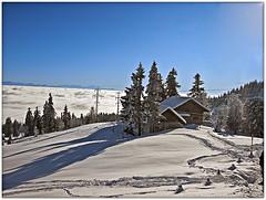 Switzerland ; Jura mountains. La Vue-des-Alpes .January 3,2009. 15:42:44, no.8172. (Izakigur) Tags: winter schweiz switzerland nc nikon europa eu