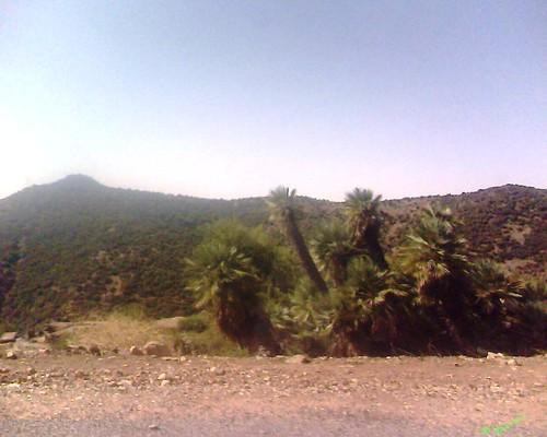 Foughal Ain Almou فوغال عين ألمو