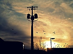 Sunset of a rainy days... (Johnnylace) Tags: sunset art sunshine birds work photography silhouettes days rainy johnnylace